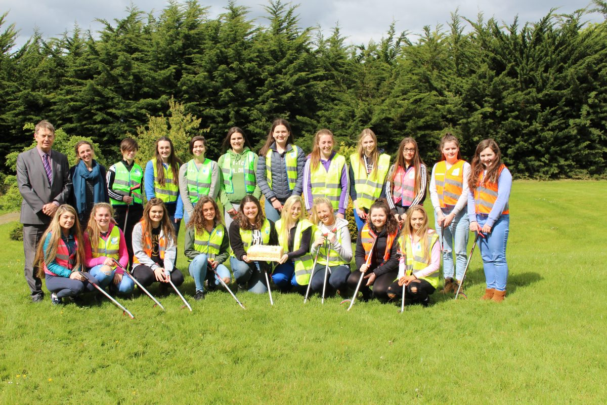 Team Limerick Clean-up 2017